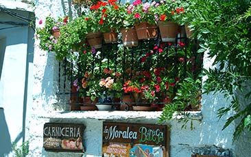 flower balcony of mountain village house